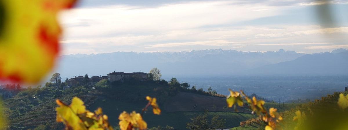 Foto bij Ferdinando Principiano