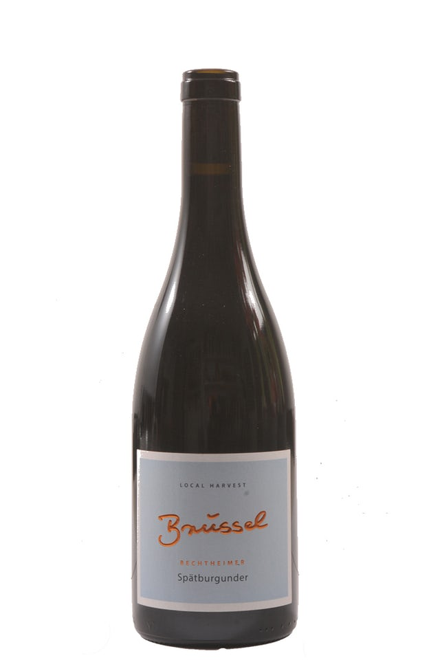 Weingut Brüssel Bechtheimer Spätburgunder 2018