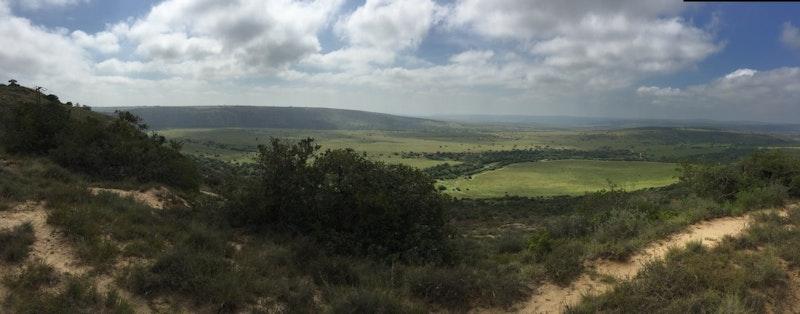 Het uitzicht in Amakhala