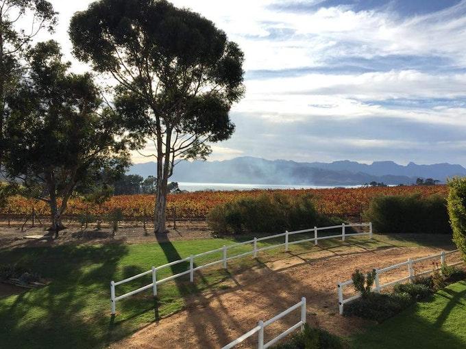 Marianne Wine Estate Zuid-Afrika