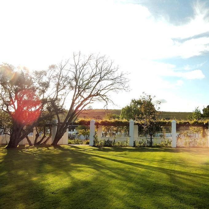 Spier Wine Estate Zuid-Afrika