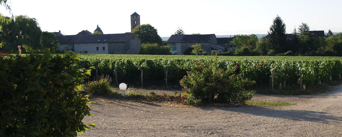 Foto bij Domaine Sallet
