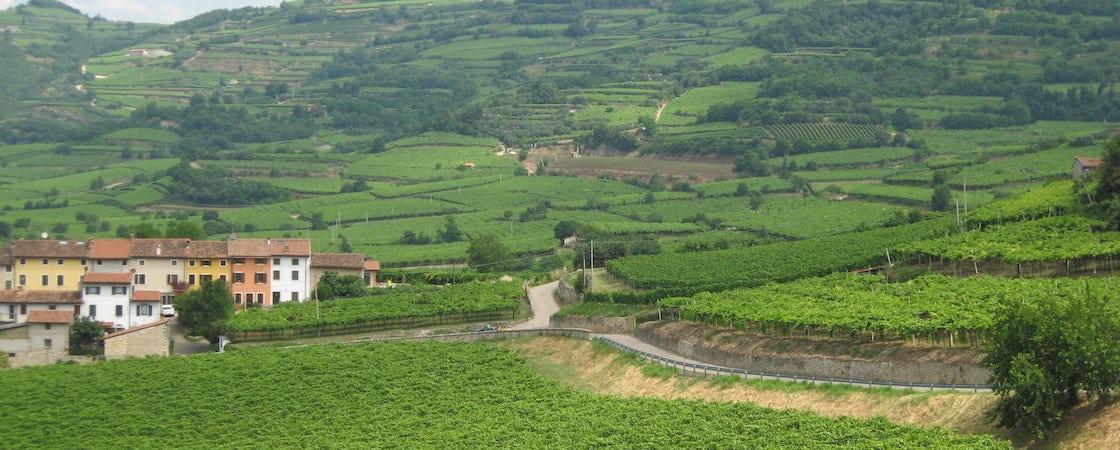 Foto bij Monte Tondo