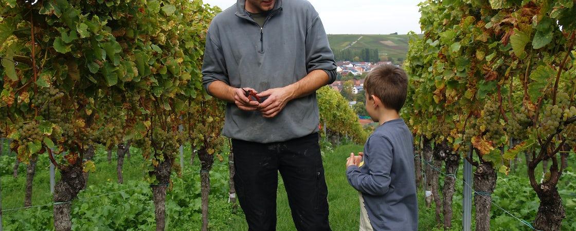 Foto bij Weingut Porzelt